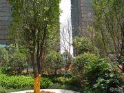 尚格名城实景图