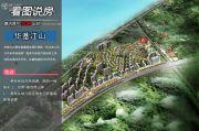中洲半岛城邦看图说房