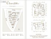 振业泊岸0室0厅0卫230平方米户型图