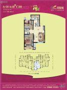 碧桂园凤凰城2室2厅1卫91平方米户型图