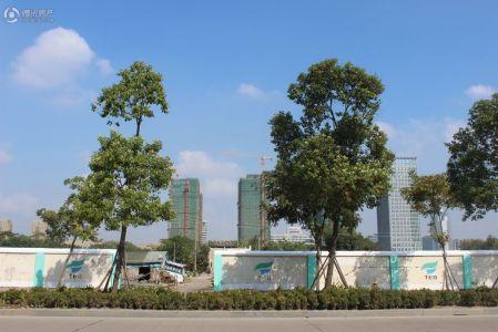 刚泰国际中心