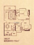 花园城3室2厅2卫116--118平方米户型图